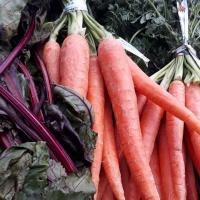 Five Interesting Facts about Carrots